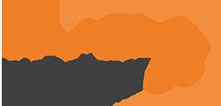 daasi international logo